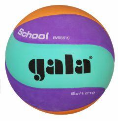 Volleybal Gala School niv.2 Soft 210gr.