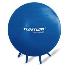 Anti-Burst Sit Ball 65 cm